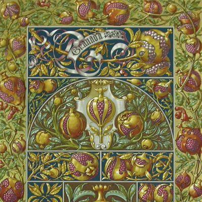 image for Pomology - Fruits