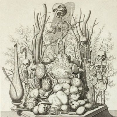 image for Wunderkammer Prints